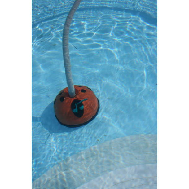 Automatisk bundsuger til pool - mariehøne